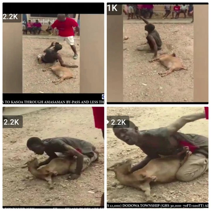 """newslite1617236898421 - This Is Lawless"""" Thief Was Forced To Chop Love With A Goat He Stole After He Was Beaten Up"""