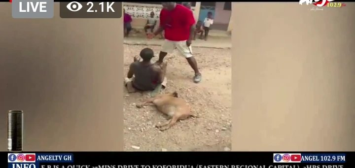 """newslite1617236974632 - This Is Lawless"""" Thief Was Forced To Chop Love With A Goat He Stole After He Was Beaten Up"""